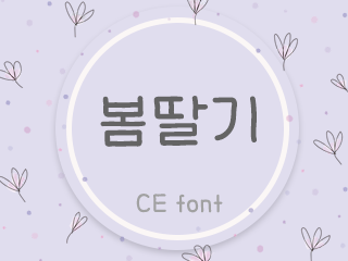 [CE폰트] CE봄딸기 TTF 비상업용 라이선스